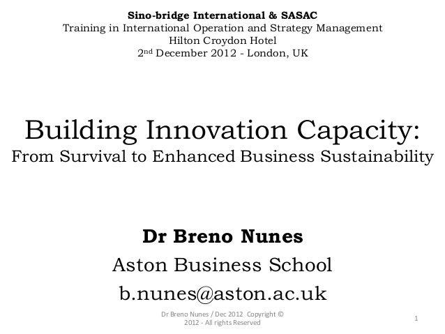 Nunes, Breno (2012) Building innovation capacity