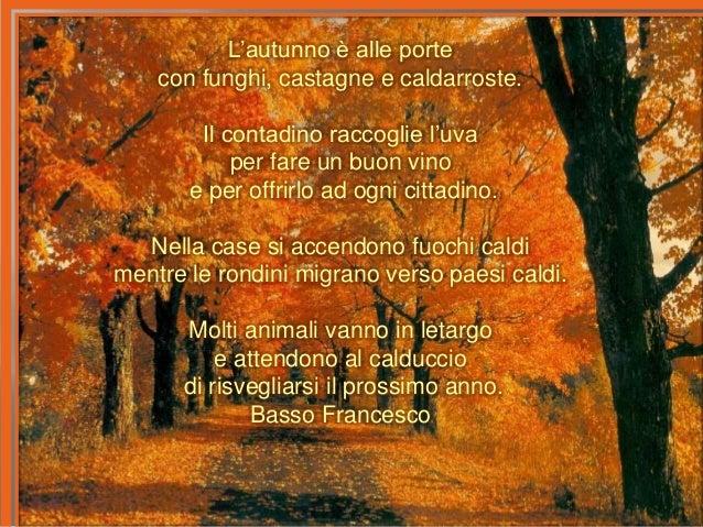 Le vostre poesie sull 39 autunno for Ad ogni buon conto sinonimo