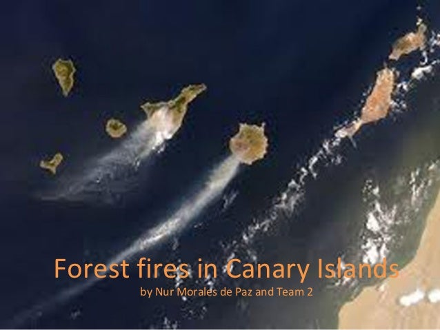 Forest fires in Canary Islands       by Nur Morales de Paz and Team 2