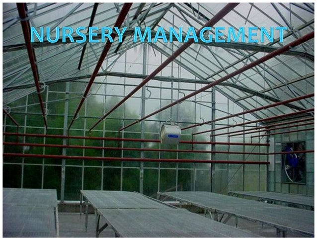 What is A Nursery?? Nursery is a place where plants are grown, nurtured and sold out. Generally, various  commercial crop ...
