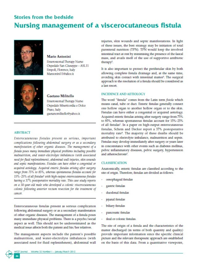 journal of nursing management pdf