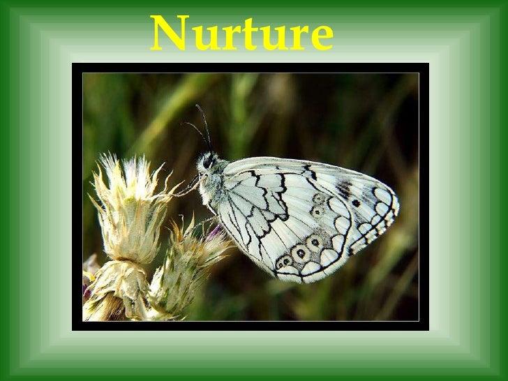 Nurture<br />