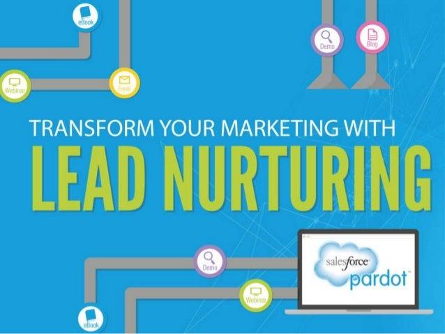 Lead Nurturing Basics