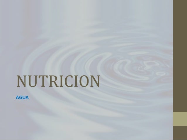 NUTRICION AGUA