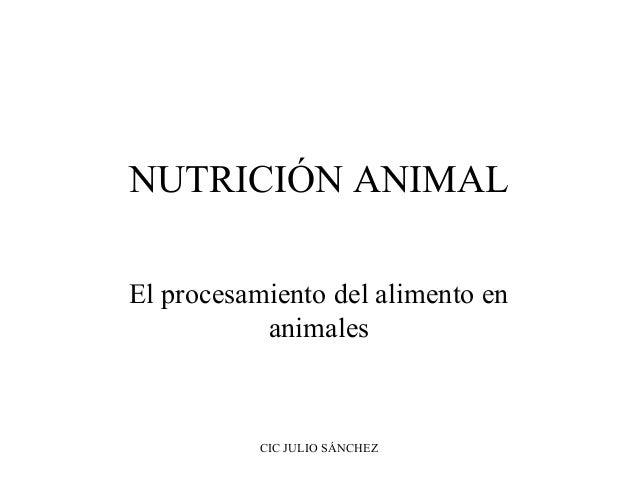 NUTRICIÓN ANIMAL El procesamiento del alimento en animales  CIC JULIO SÁNCHEZ