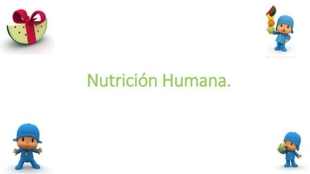 Nutrición Humana.