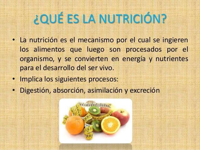 Resultado de imagen de que es la nutricion