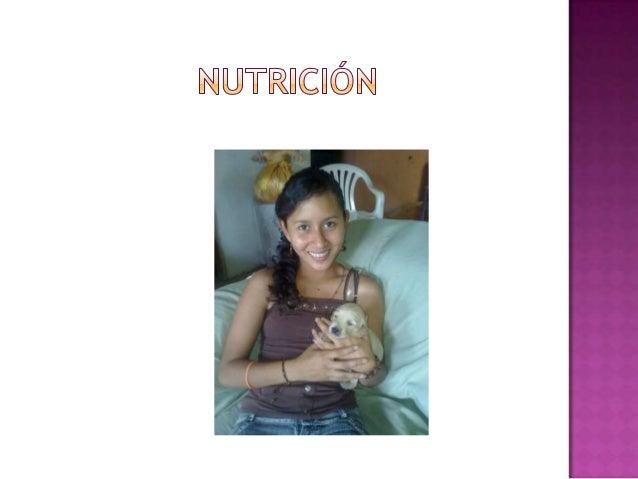 La nutrición es uno de los pilares de la    salud y el desarrollo. En personas de   todas las edades una nutrición mejor  ...