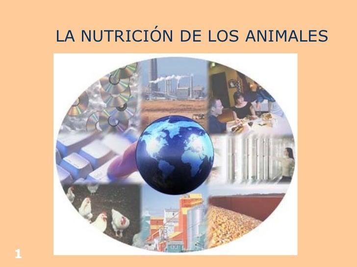 LA NUTRICIÓN DE LOS ANIMALES
