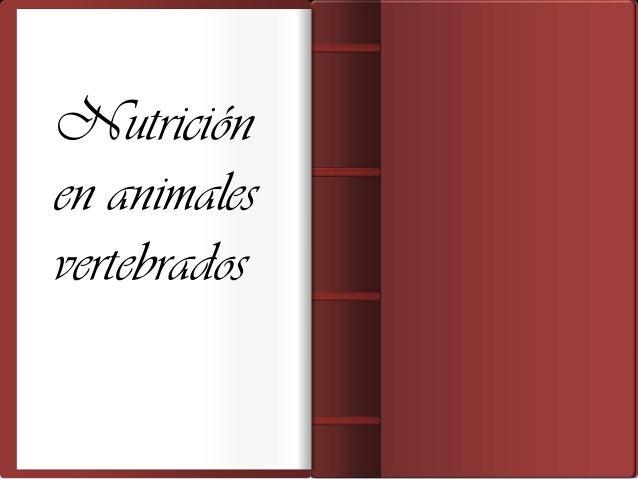Nutrición     Integrantes:              Camila Feriaen animales   Marcos Carrillo              Kelly Pérez              Lu...
