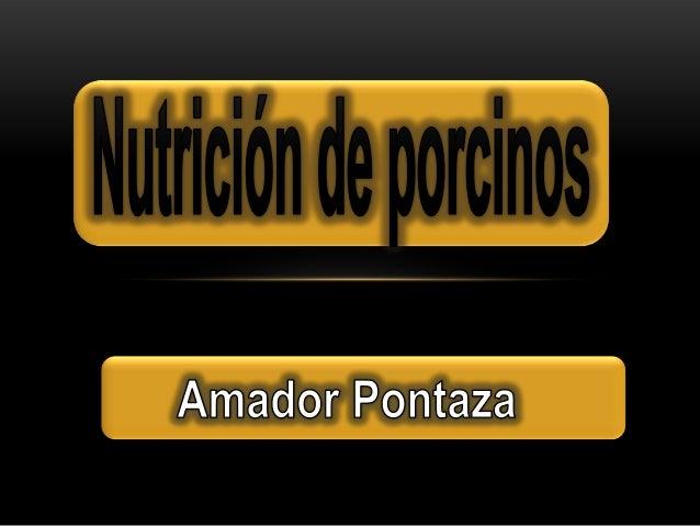 Nutricion de cerdos