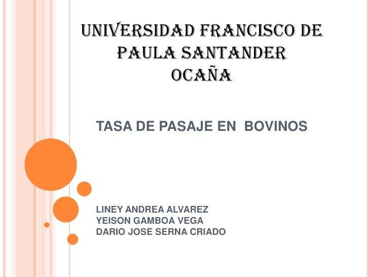 TASA DE PASAJE EN  BOVINOS<br />LINEY ANDREA ALVAREZ YEISON GAMBOA VEGADARIO JOSE SERNA CRIADO<br />UNIVERSIDAD FRANCISCO ...