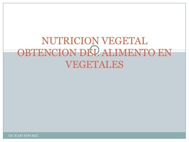 NUTRICION VEGETAL OBTENCION DEL ALIMENTO EN VEGETALES  CIC JULIO SÁNCHEZ