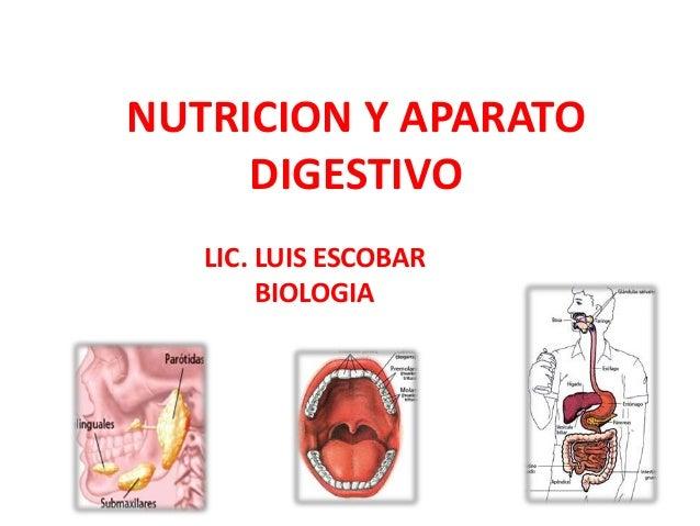 NUTRICION Y APARATO DIGESTIVO LIC. LUIS ESCOBAR BIOLOGIA