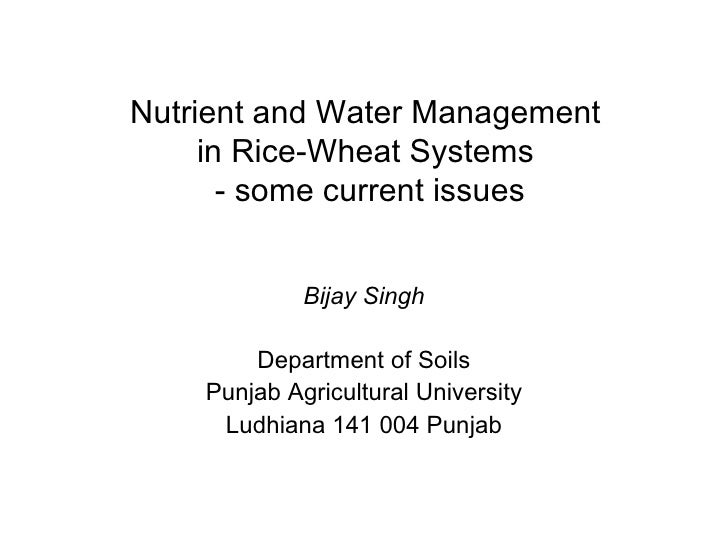 Nutrient and Water Management  in Rice-Wheat Systems  - some current issues Bijay Singh Department of Soils Punjab Agricul...