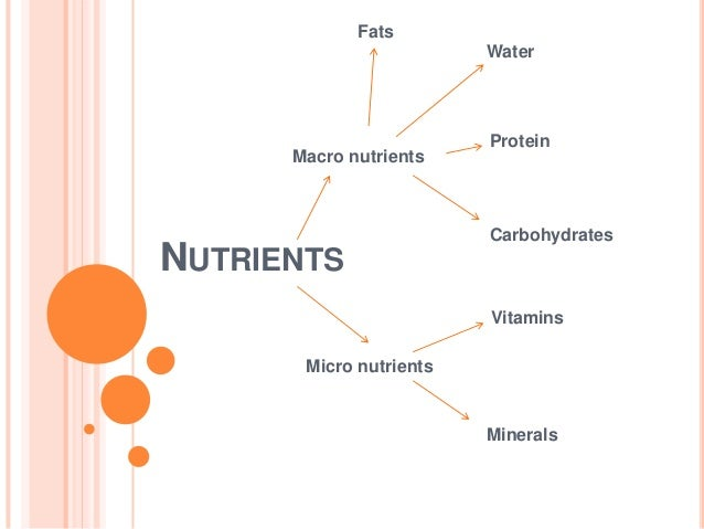 Fats                         Water                         Protein      Macro nutrients                         Carbohydra...