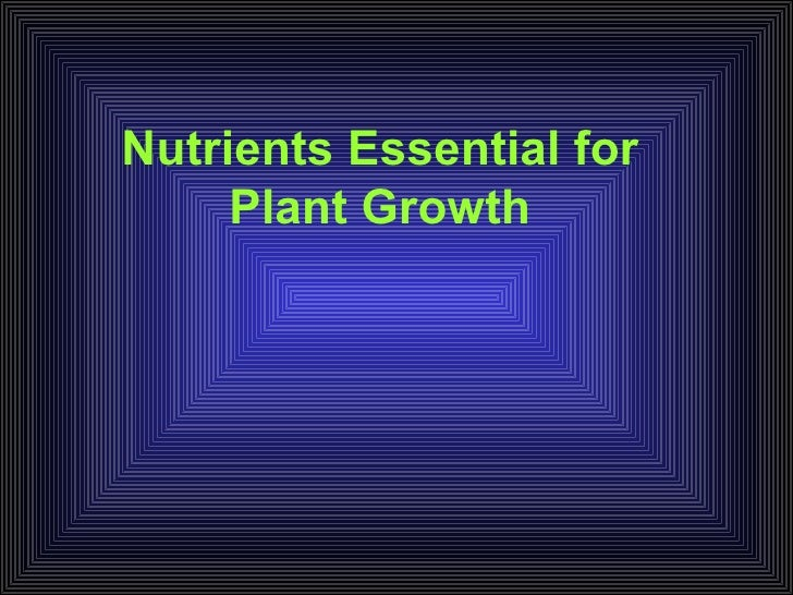 Nutrients   review