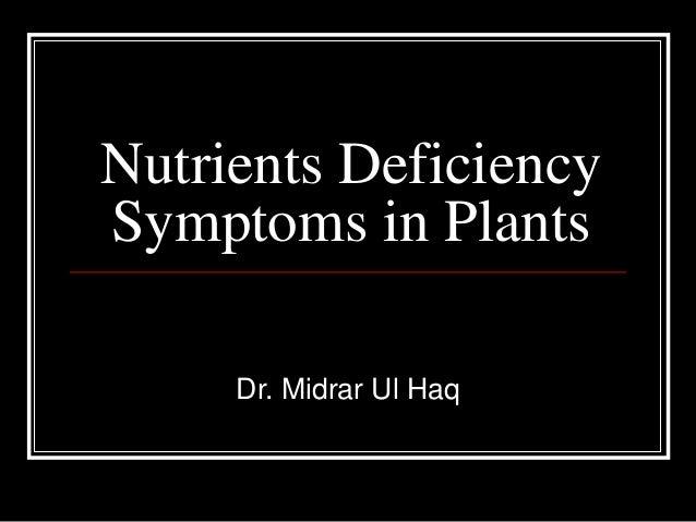 Nutrients Deficiency Symptoms in Plants Dr. Midrar Ul Haq
