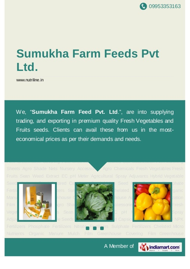 09953353163A Member ofSumukha Farm Feeds PvtLtd.www.nutriline.inHybrid Vegetable Seeds Lettuce Seed Colored Capsicum Seed ...