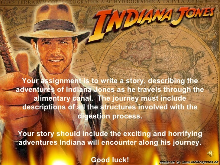 Your assignment is to write a story, describing the adventures of Indiana Jones as he travels through the alimentary canal...