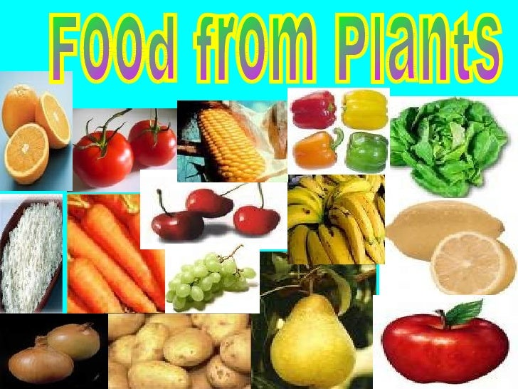 Food from Plants