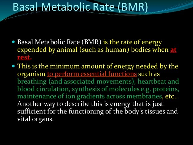 metabolic race essay Sign up with facebook, twitter or google your otherpaperscom data will be completely private, secure and will not be posted to your facebook wall or tweeted.
