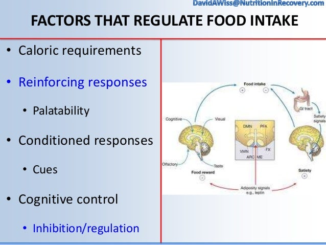 Nutrition Interventions In Addiction Recovery The Role Of The Dietit