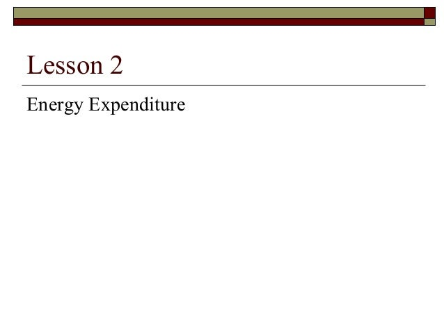 Lesson 2 Energy Expenditure