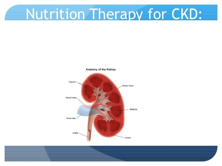 Nutrition Therapy for CKD: A Case Study Approach