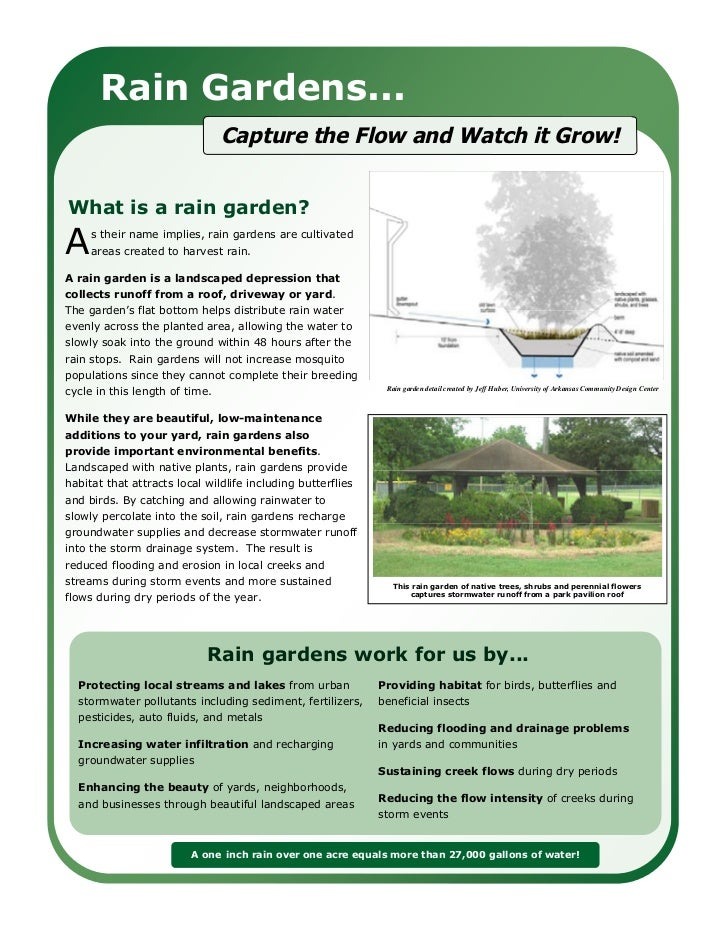 Rain Gardens...                                Capture the Flow and Watch it Grow!                                        ...