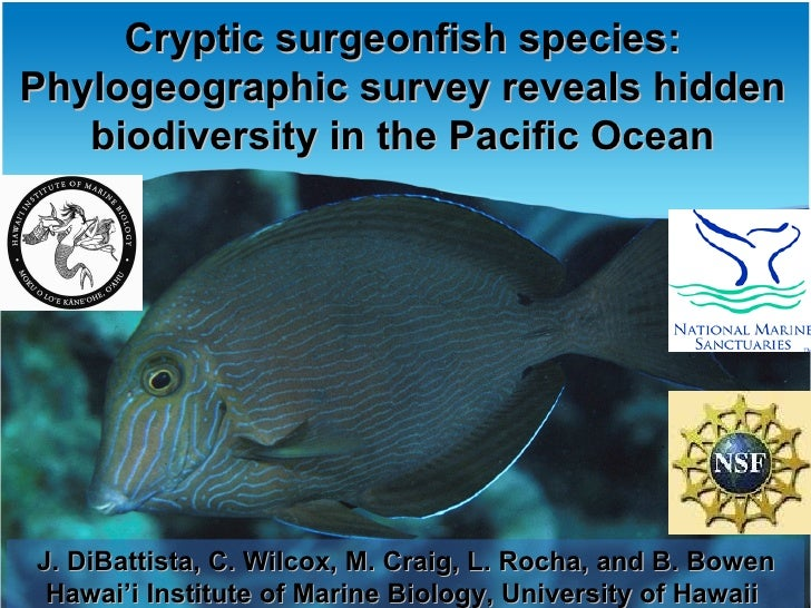 Cryptic surgeonfish species:Phylogeographic survey reveals hidden   biodiversity in the Pacific OceanJ. DiBattista, C. Wil...