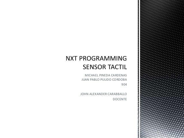 Nxt Programming Tactil