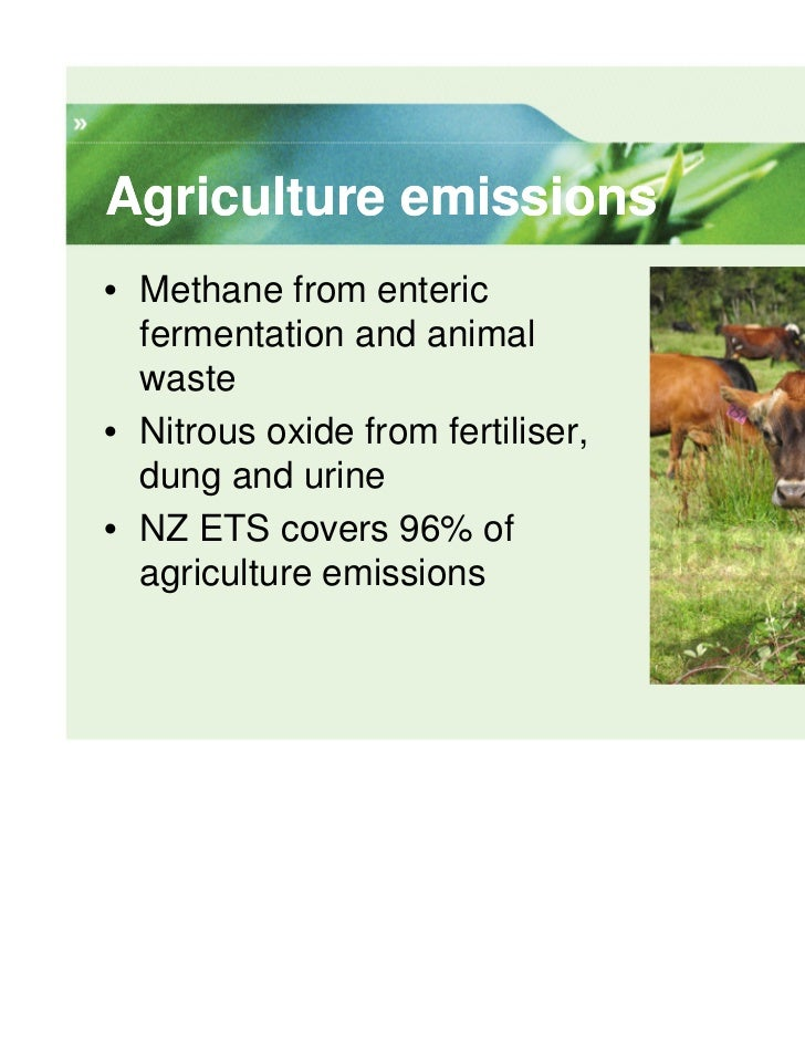 Agriculture emissions• Methane from enteric  fermentation and animal  waste• Nitrous oxide from fertiliser,  dung and urin...
