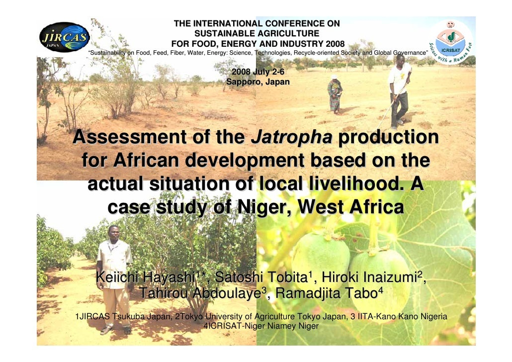 Assessment of the Jatropha production for African development based on the actual situation of local livelihood. A case study of Niger, West Africa