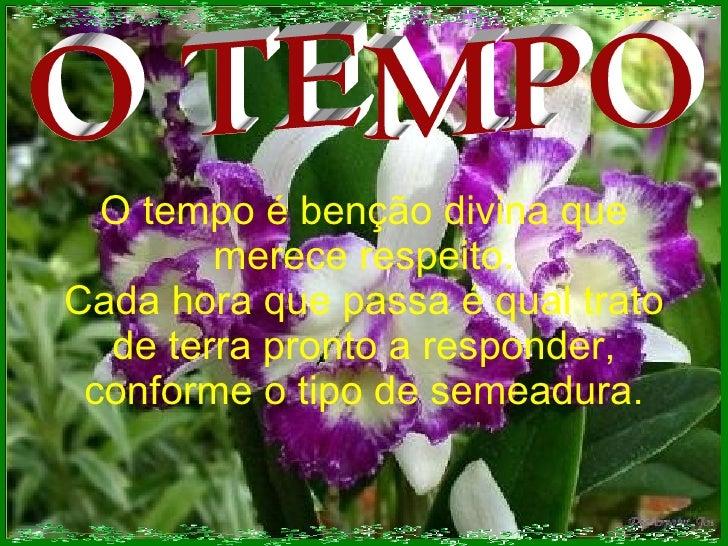 O TEMPO O tempo é benção divina que merece respeito. Cada hora que passa é qual trato de terra pronto a responder, conform...