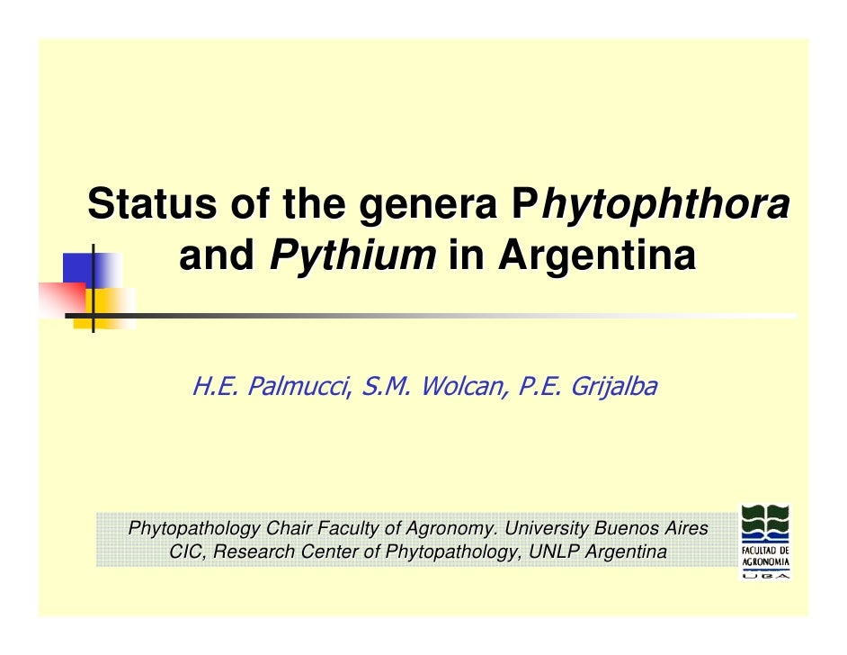 Status of the genera Phytophthora     and Pythium in Argentina          H.E. Palmucci, S.M. Wolcan, P.E. Grijalba      Phy...