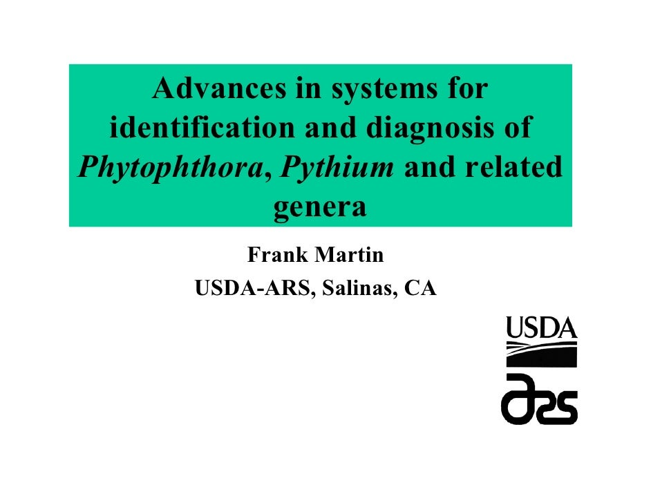 Advances in systems for   identification and diagnosis of Phytophthora, Pythium and related                genera         ...