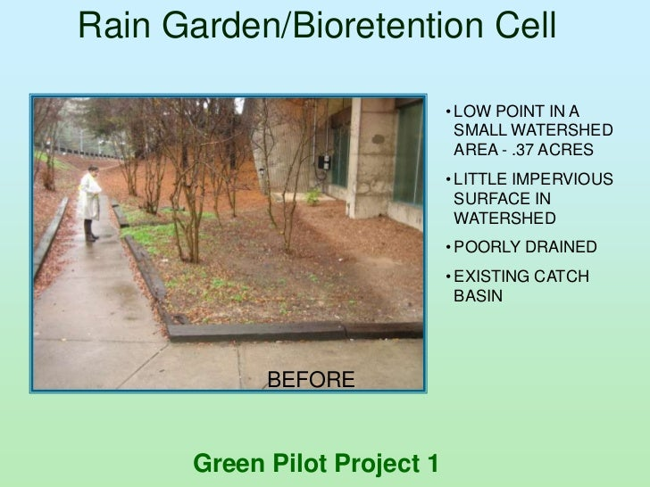 Rain Garden/Bioretention Cell                              • LOW POINT IN A                                SMALL WATERSHED...