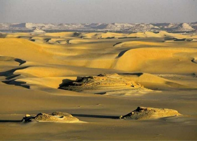 The Egyptian Oasis