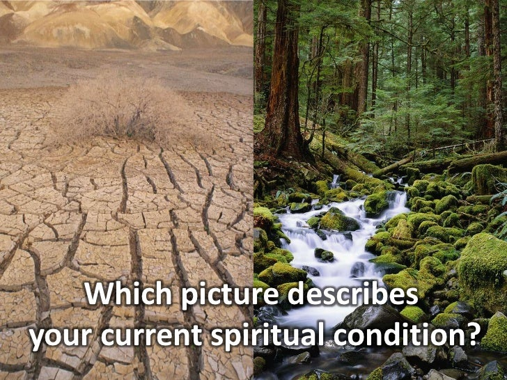 Which picture describes <br />your current spiritual condition?<br />