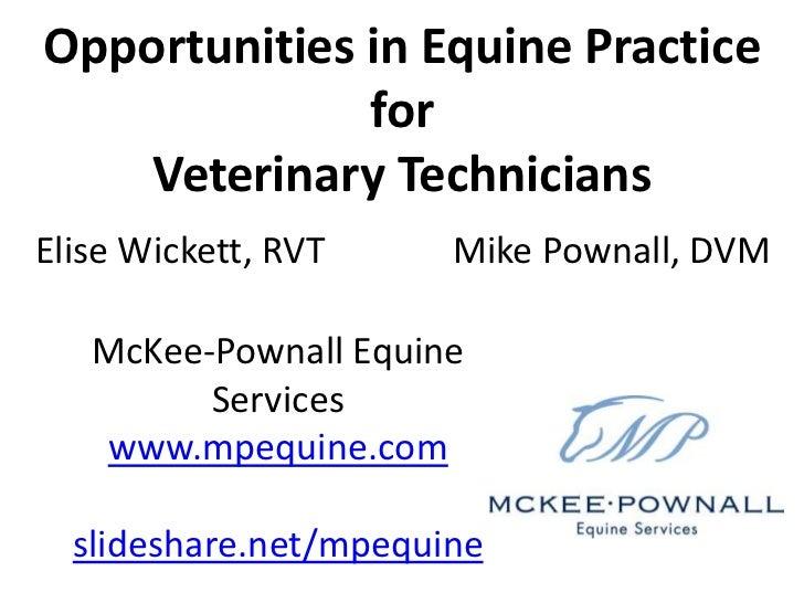 Opportunities in Equine Veterinary Practice for Technicians