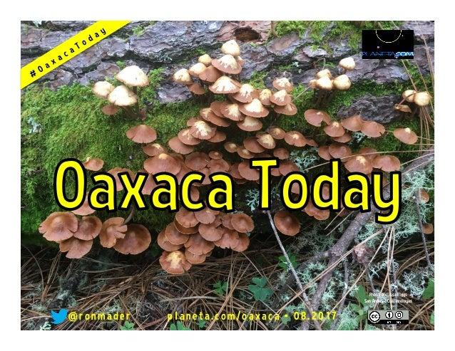 @ronmader • oaxaca.wikispaces.com/hoy • 08.2015
