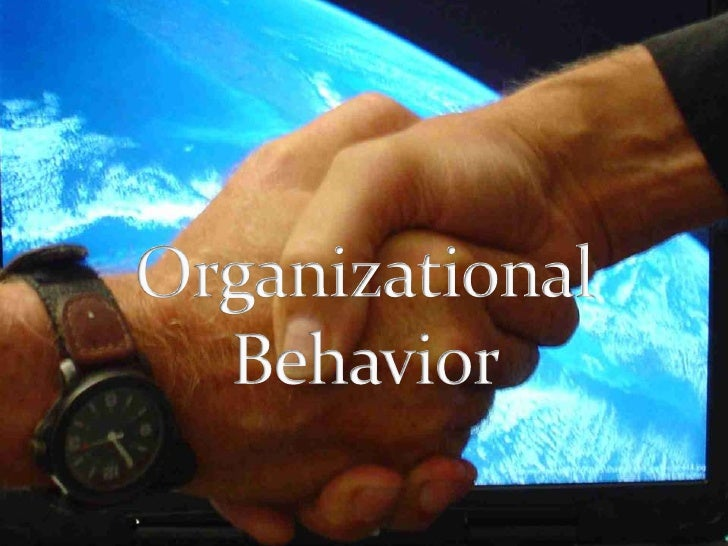 Organizational Behavior <br />