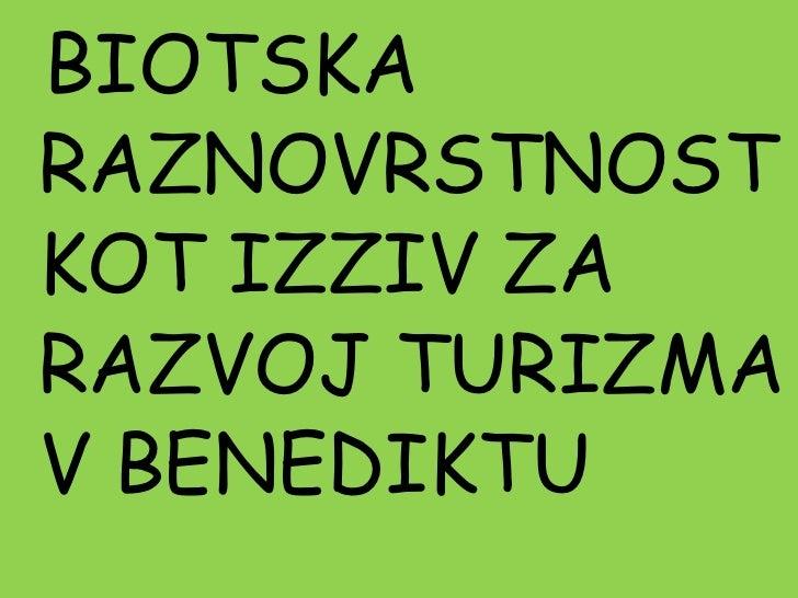 Ekoizziv 2010/11 OŠ Benedikt 1