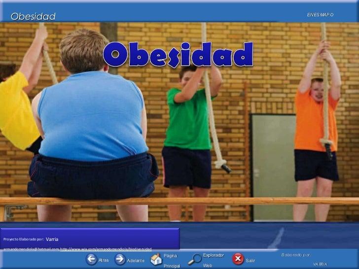 Obesidad15112011 bcd