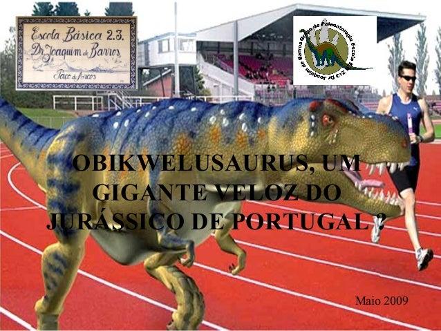 OBIKWELUSAURUS, UM  GIGANTE VELOZ DO  JURÁSSICO DE PORTUGAL ?  Maio 2009
