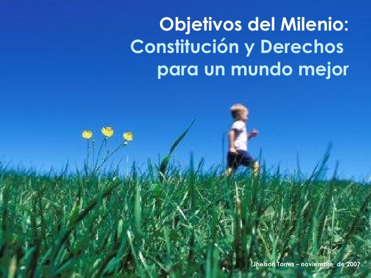 Objetivos del Milenio: Constitución y Derechos  para un mundo mejor Jheison Torres – noviembre  de 2007