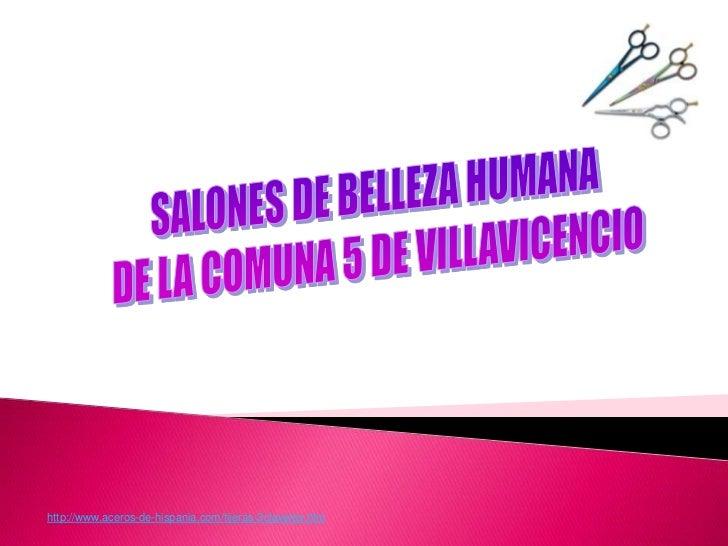 http://www.aceros-de-hispania.com/tijeras-3claveles.htm