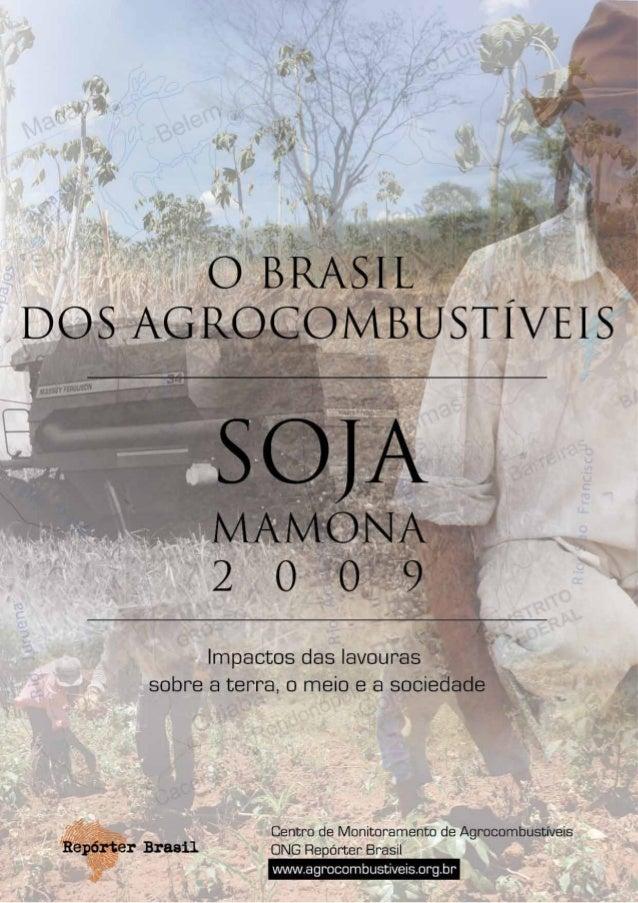 O Brasil dos AgrocombustíveisÍndice   Apresentação                                                                      5 ...