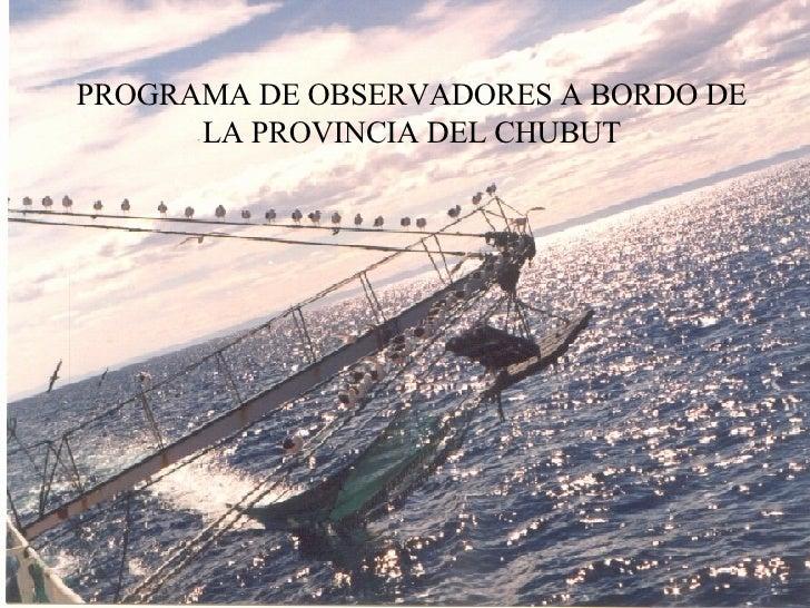 PROGRAMA DE OBSERVADORES A BORDO DE LA PROVINCIA DEL CHUBUT